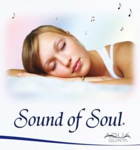 Sound of Soul Anwendungsgebiete